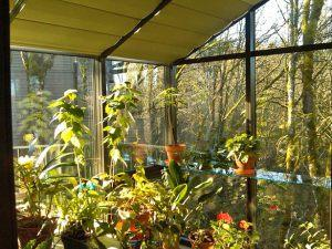 sunroom-straight-eave-seattle-27